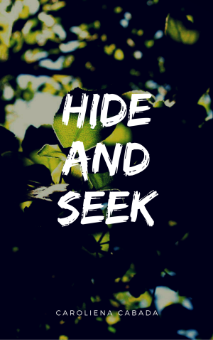 Hide And Seek 4